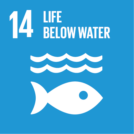 Icon and Link to the United Nations sustainable development goal page for Life Below Water