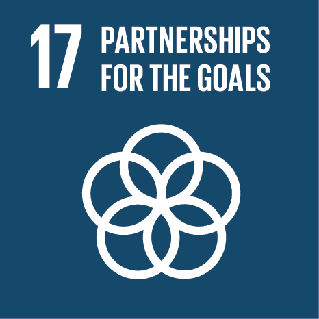 Icon and Link to the United Nations sustainable development goal page for Partnerships for the Goals